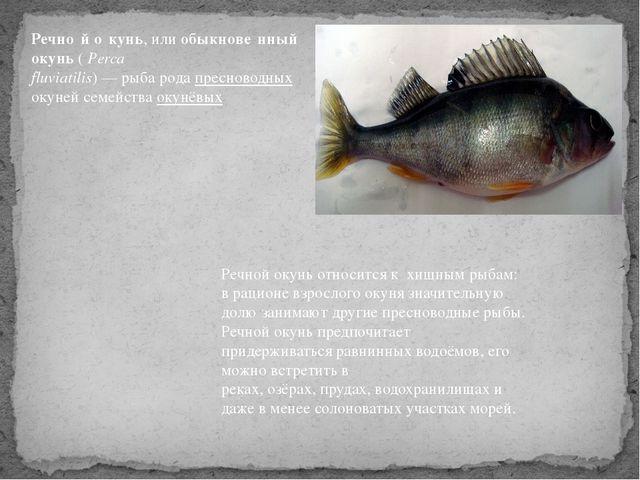 Речно́й о́кунь, илиобыкнове́нный окунь(Perca fluviatilis)—рыбародапрес...