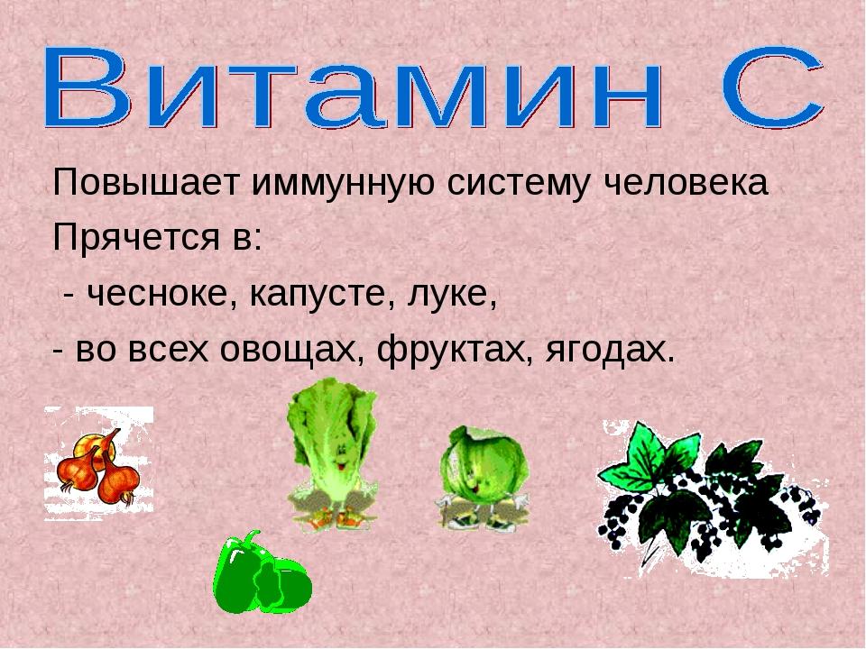 Повышает иммунную систему человека Прячется в: - чесноке, капусте, луке, - во...