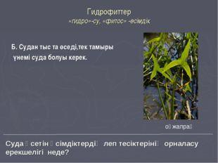 Гидрофиттер «гидро»-су, «фитос» -өсімдік Б. Судан тыс та өседі,тек тамыры үне