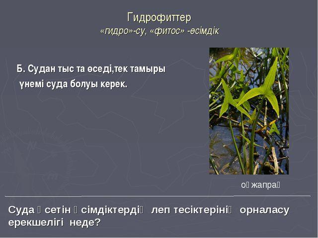 Гидрофиттер «гидро»-су, «фитос» -өсімдік Б. Судан тыс та өседі,тек тамыры үне...