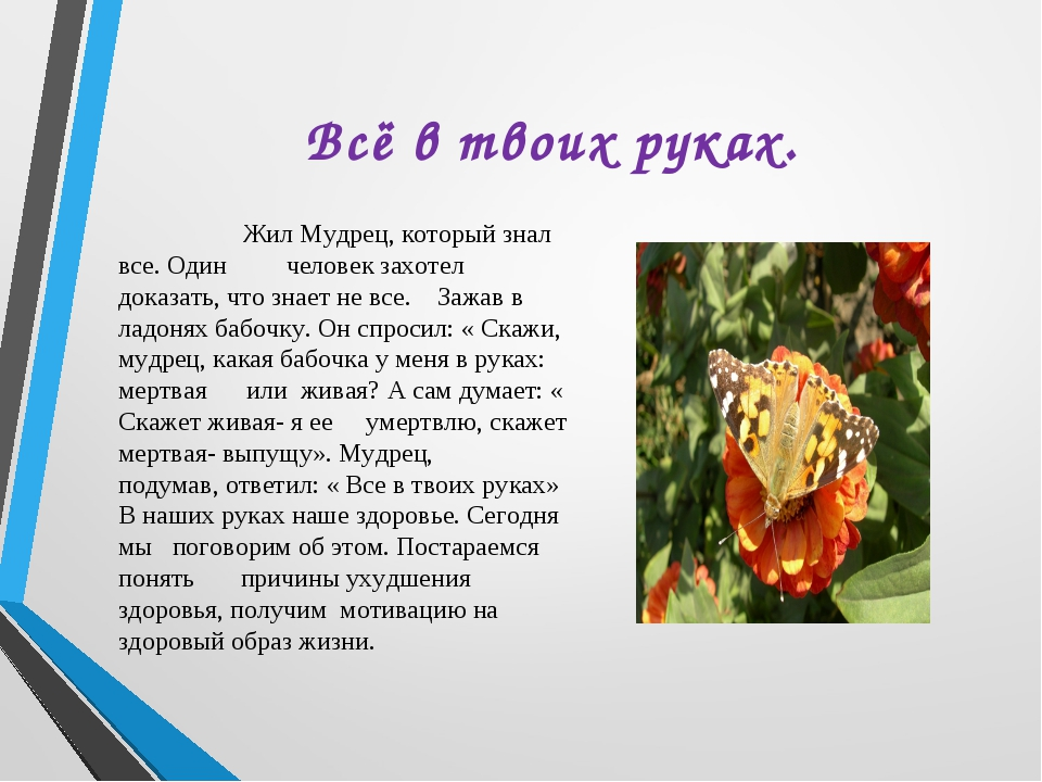 день доктора смотреть онлайн трейлер на русском