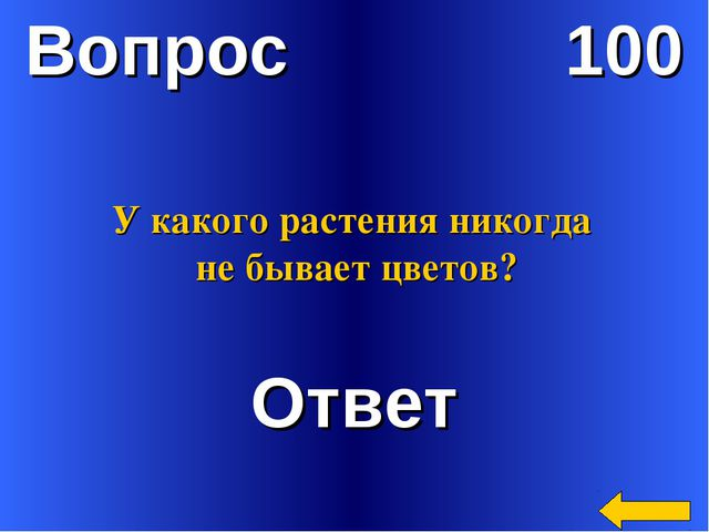 Вопрос 100 Ответ У какого растения никогда не бывает цветов?