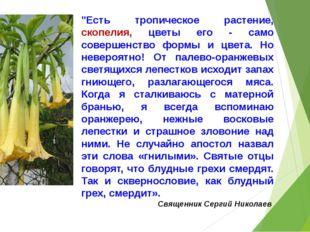 """""""Есть тропическое растение, скопелия, цветы его - само совершенство формы и"""