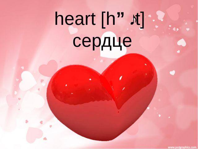 heart [hɑːt] сердце