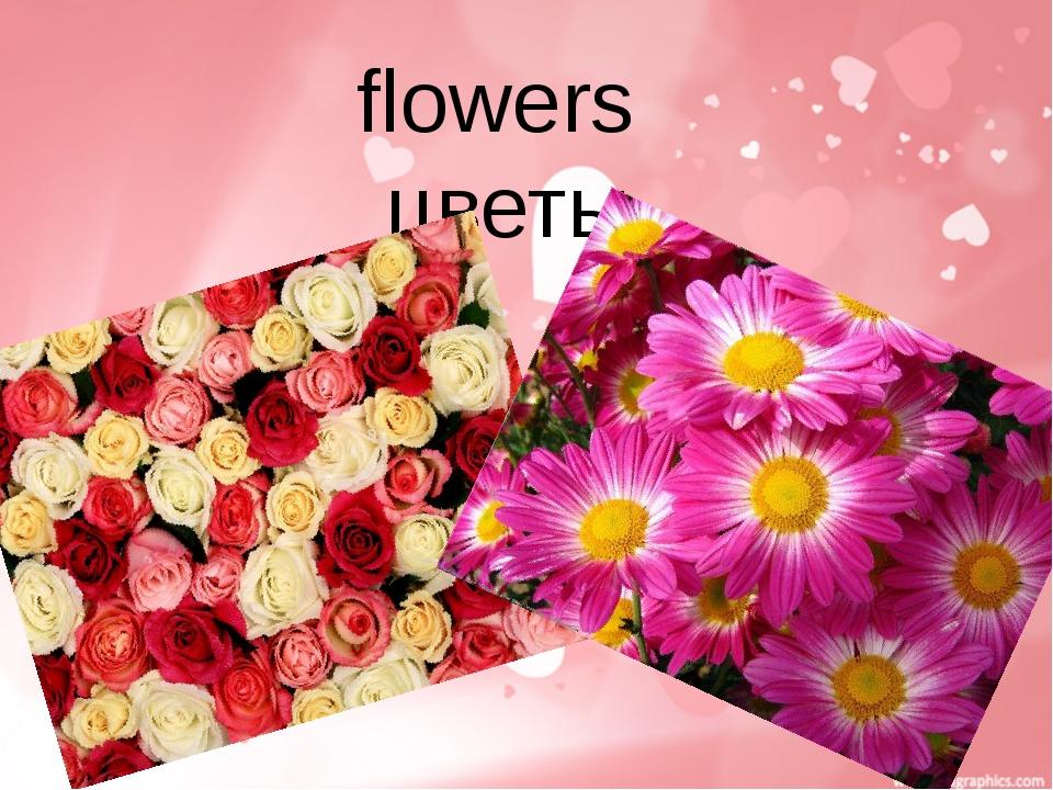 flowers цветы