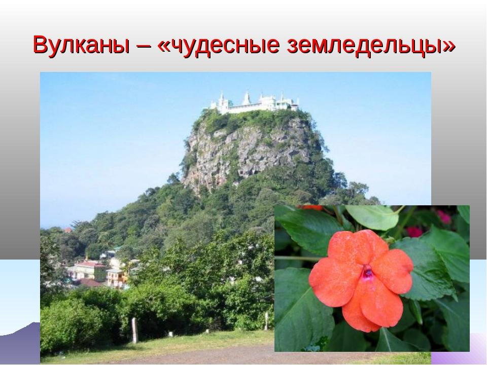 Вулканы – «чудесные земледельцы»