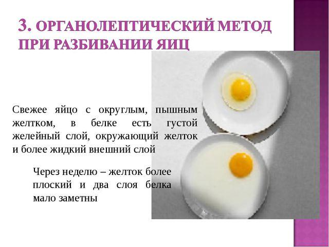 Через неделю – желток более плоский и два слоя белка мало заметны Свежее яйцо...