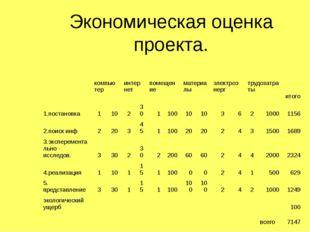 Экономическая оценка проекта.  компьютер  интернет  помещение  материалы