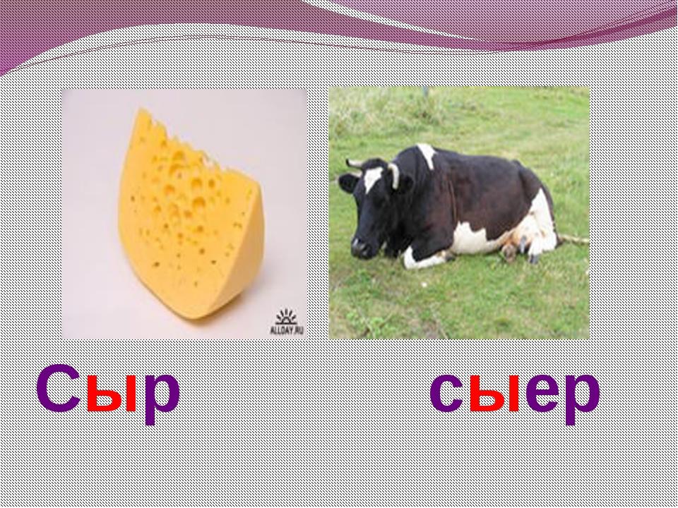 Сыр сыер