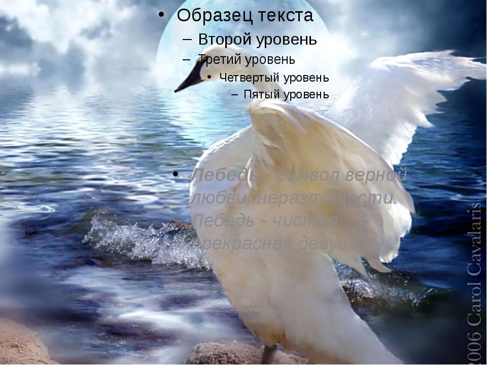 Лебедь - символ верной любви, неразлучности. Лебедь - чистая прекрасная деву...