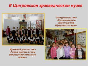 В Щигровском краеведческом музее Музейный урок по теме «Город Щигры в годы Ве