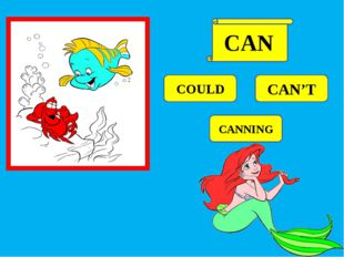 COULD CAN'T CANNING CAN