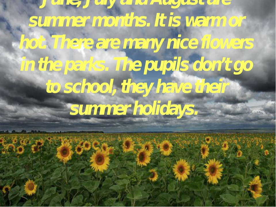 June, July and August are summer months. It is warm or hot. There are many ni...