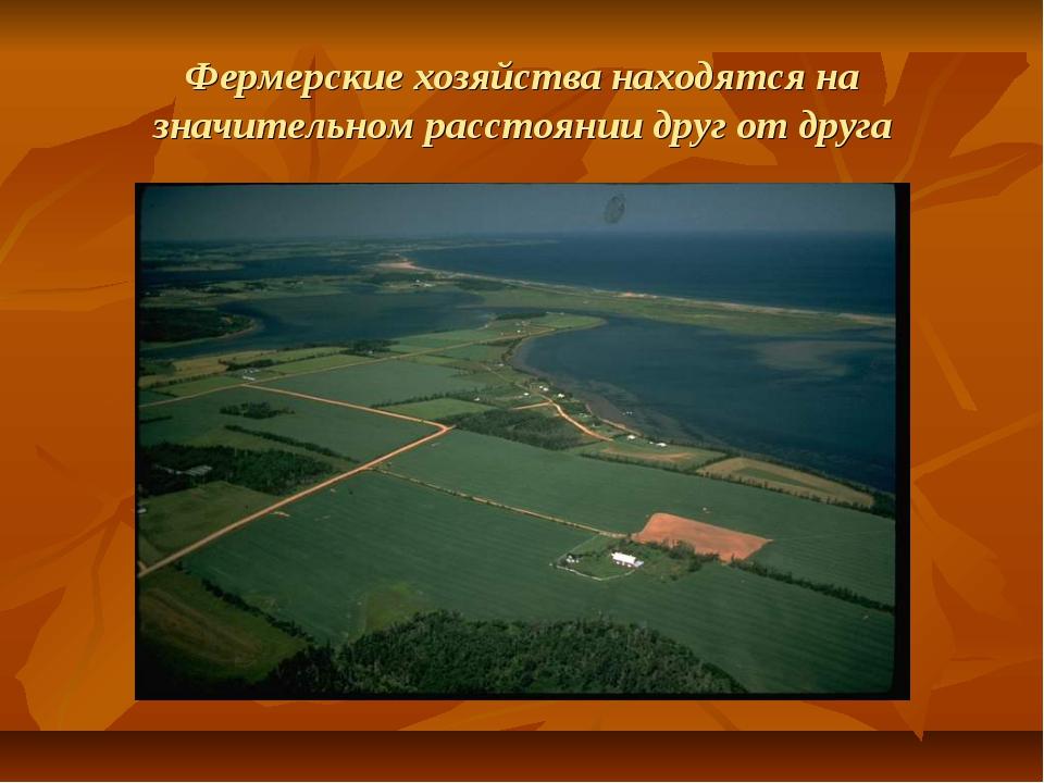 Фермерские хозяйства находятся на значительном расстоянии друг от друга