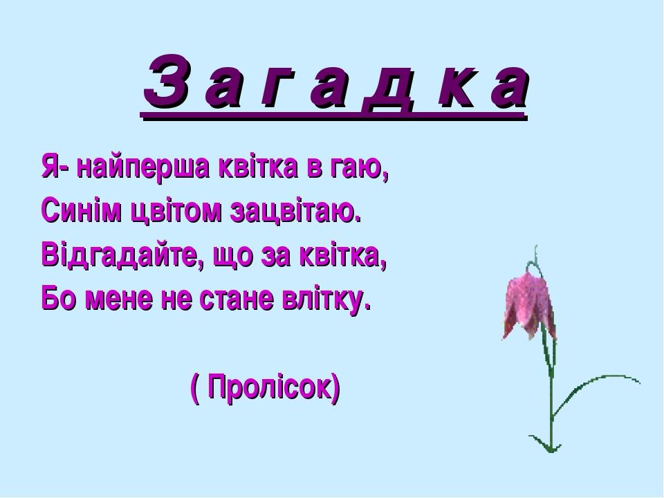 З а г а д к а Я- найперша квітка в гаю, Синім цвітом зацвітаю. Відгадайте, що...