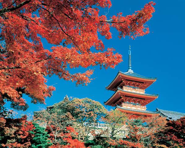 C:\Documents and Settings\Admin\Мои документы\Мои рисунки\картинки япония\1247469634_CountriesJaponiaCountryImage7.jpg