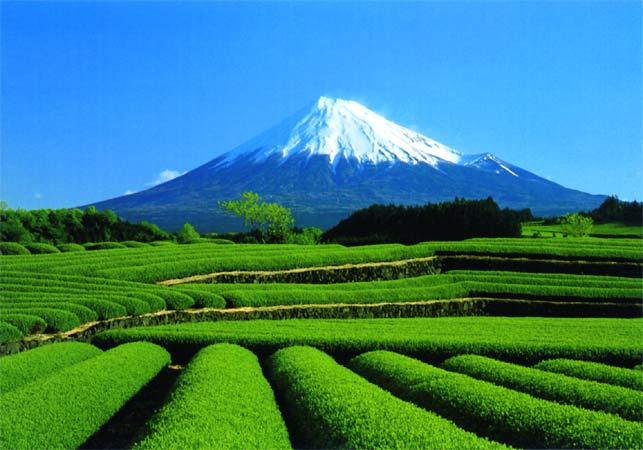 C:\Documents and Settings\Admin\Мои документы\Мои рисунки\картинки япония\image019.jpg