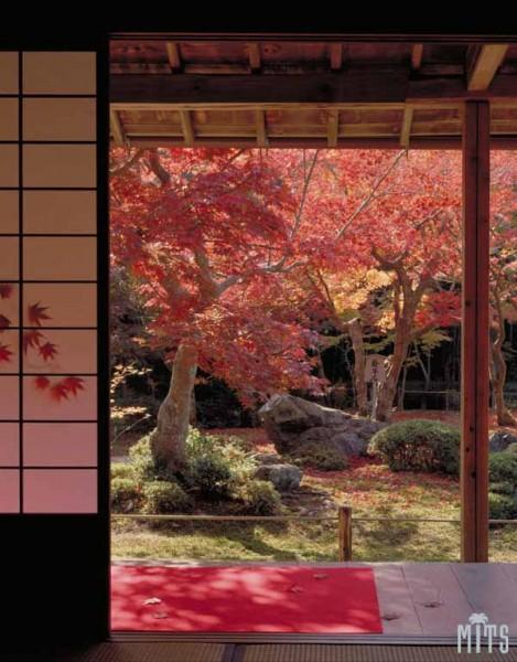 C:\Documents and Settings\Admin\Мои документы\Мои рисунки\картинки япония\008064-japan.jpg