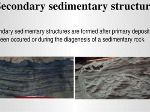 Secondary sedimentary structure Secondary sedimentary structures are formed a