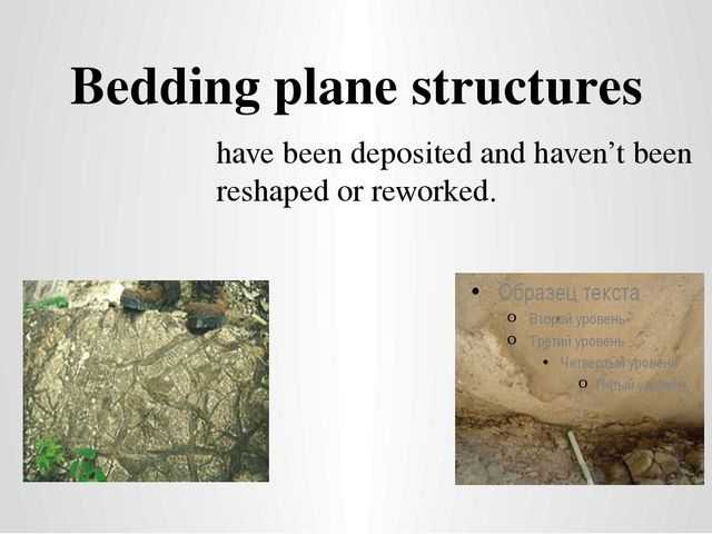 Bedding plane structures have been deposited and haven't been reshaped or rew...