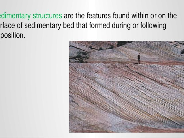 Sedimentary structures are the features found within or on the surface of sed...