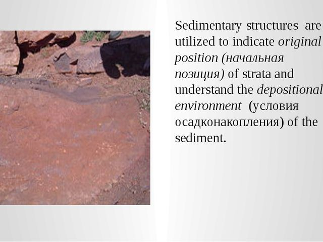 Sedimentary structures  are utilized to indicate original position (начальная...