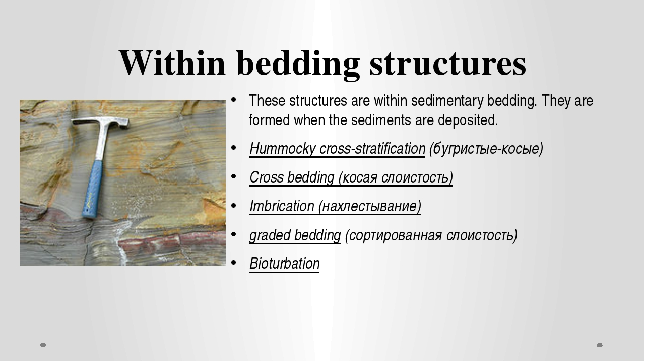 Within bedding structures These structures are within sedimentary bedding. Th...