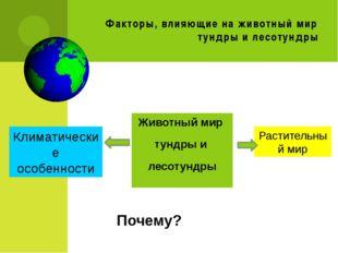 Факторы, влияющие на животный мир тундры и лесотундры Животный мир тундры и л