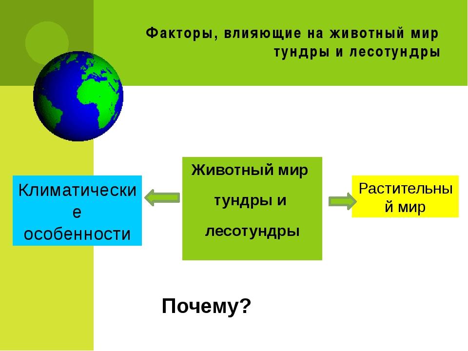 Факторы, влияющие на животный мир тундры и лесотундры Животный мир тундры и л...