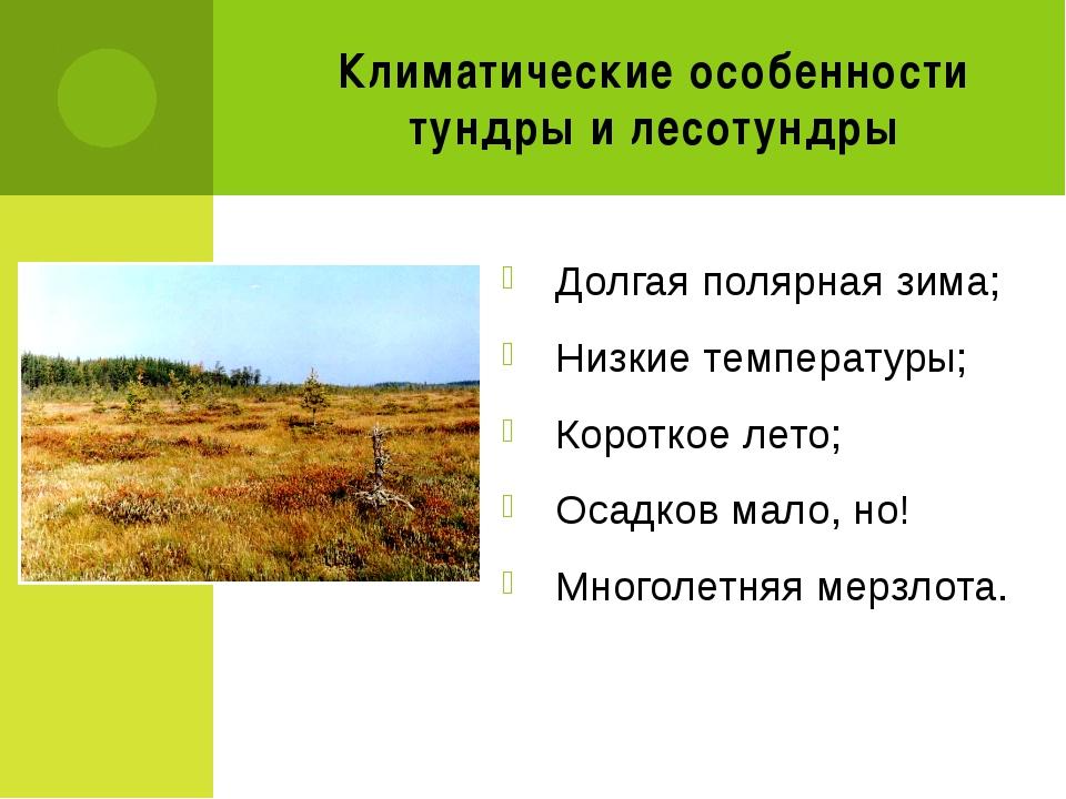 Климатические особенности тундры и лесотундры Долгая полярная зима; Низкие те...
