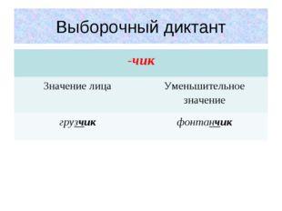 Выборочный диктант -чик Значение лицаУменьшительное значение грузчикфонтан