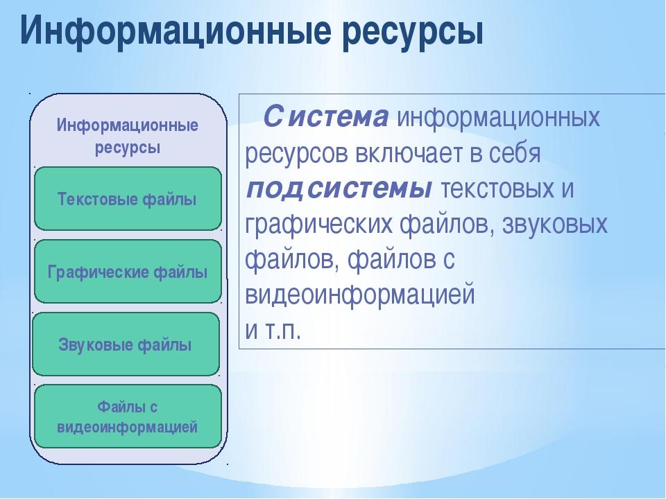 Информационные ресурсы Система информационных ресурсов включает в себя подсис...
