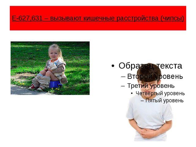 Е-627,631 – вызывают кишечные расстройства (чипсы)