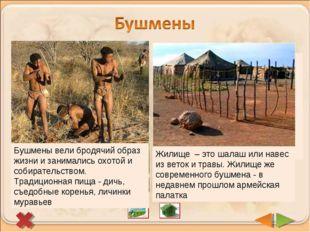 В пустынях и полупустынях Южной Африки живут бушмены. Сейчас их осталось немн
