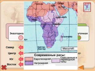 Берберы и арабы (туареги, алжирцы, египтяне) Бушмены и готтентоты Эфиопы, мал