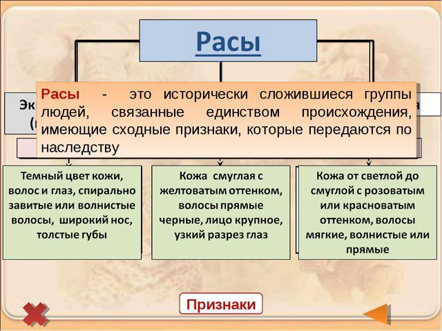 Признаки Расы - это исторически сложившиеся группы людей, связанные единством...