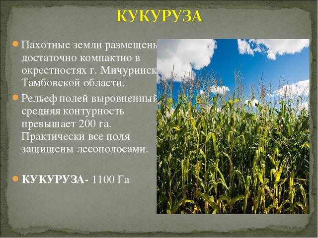 Пахотные земли размещены достаточно компактно в окрестностях г.Мичуринска Та...
