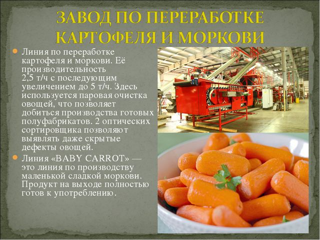 Линия попереработке картофеля иморкови. Её производительность 2,5т/чспос...