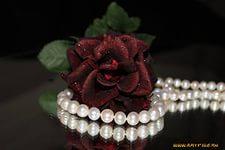 Обои Бордовая роза и жемчужные бусы - Фото обои рабочего стола