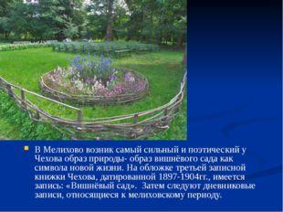 В Мелихово возник самый сильный и поэтический у Чехова образ природы- образ
