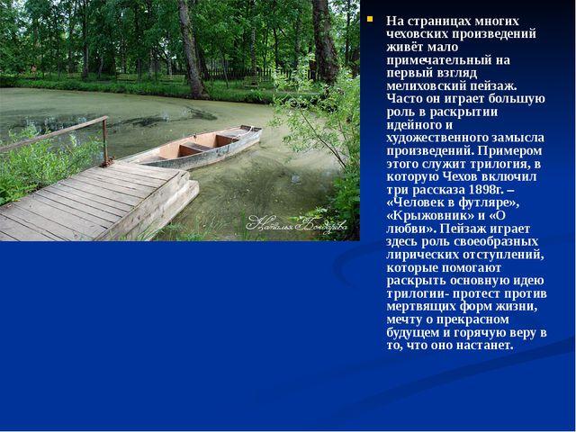 На страницах многих чеховских произведений живёт мало примечательный на перв...