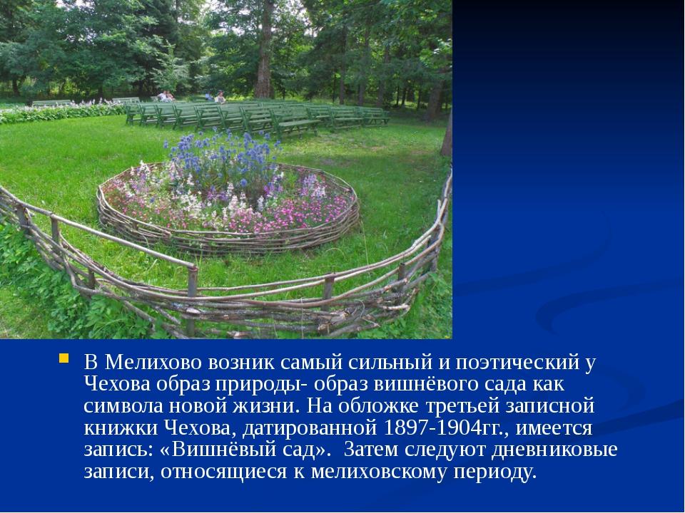 В Мелихово возник самый сильный и поэтический у Чехова образ природы- образ...