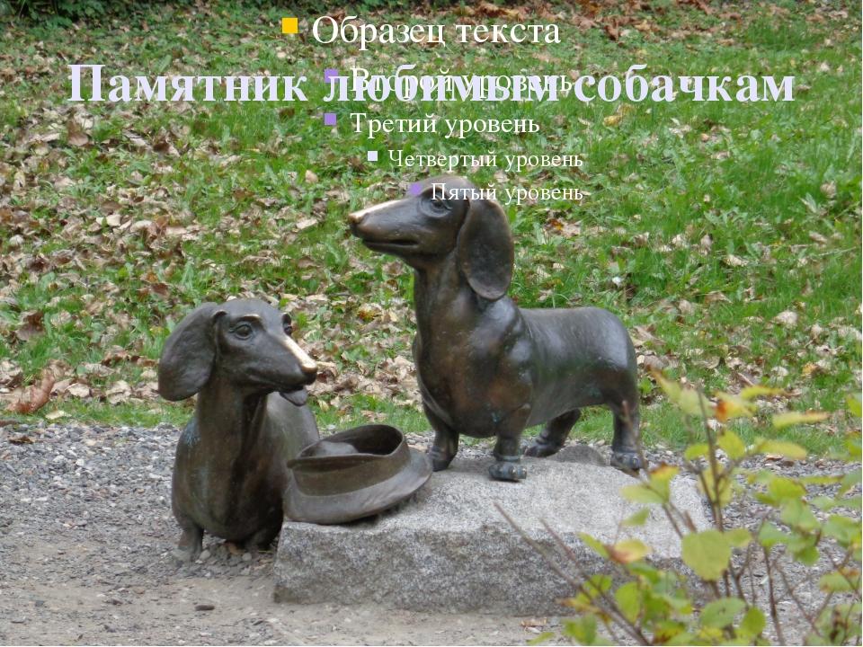 Памятник любимым собачкам