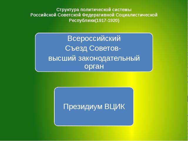 Структура политической системы Российской Советской Федеративной Социалистиче...