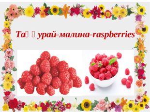 Таңқурай-малина-raspberries