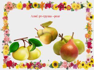 Алмұрт-груша –pear