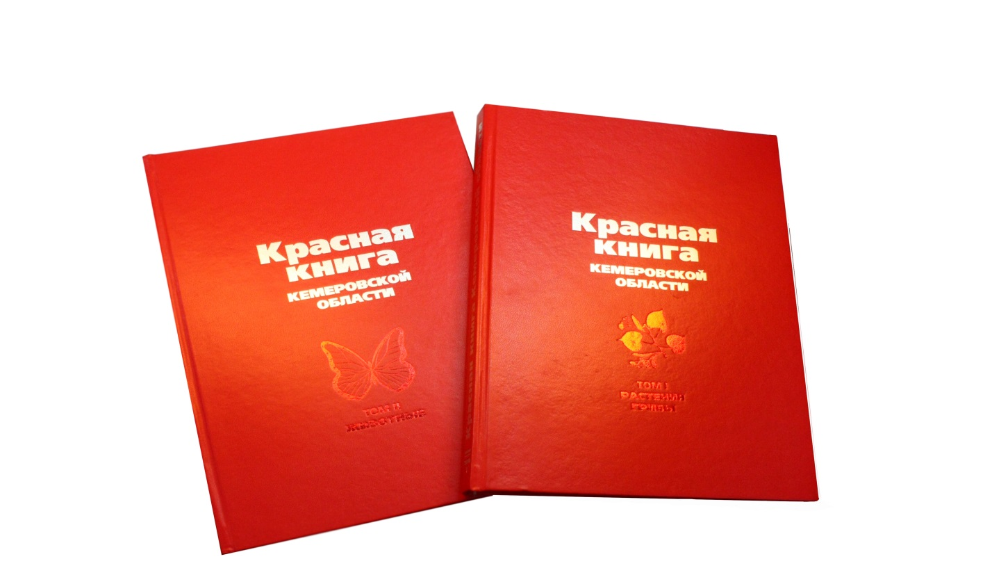 http://kemles.ru/images/lenta/1353.jpg