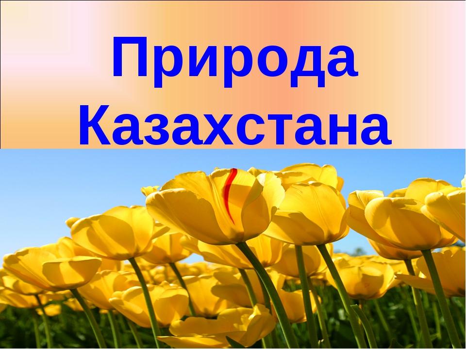 Природа Казахстана