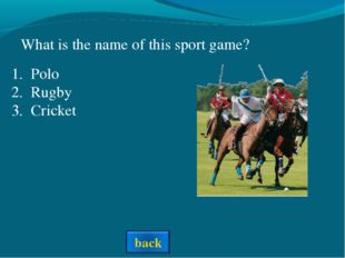 What is the name of this sport game? Polo Rugby Cricket