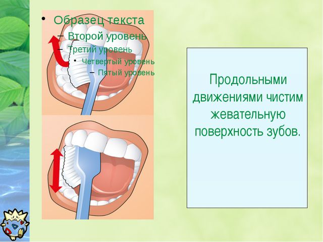 Продольными движениями чистим жевательную поверхность зубов.